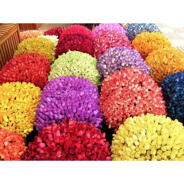 1000 rosas de madera con envoltorios y tallos