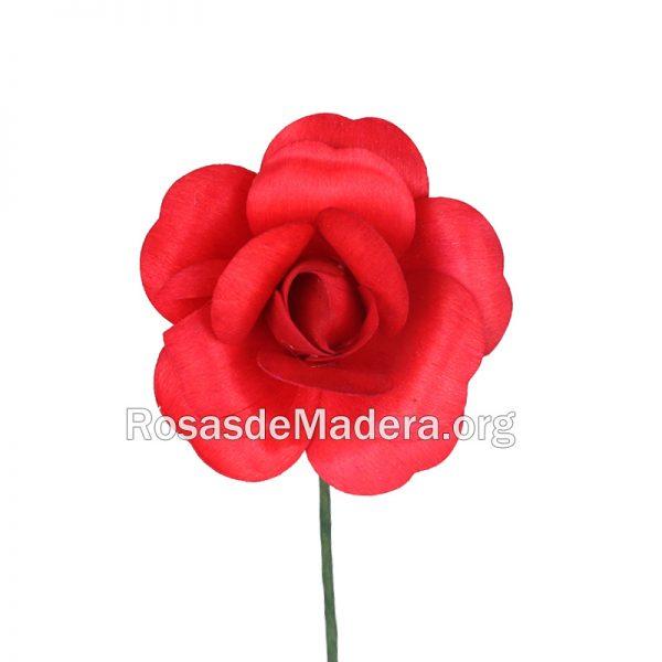 Rosa roja abierta